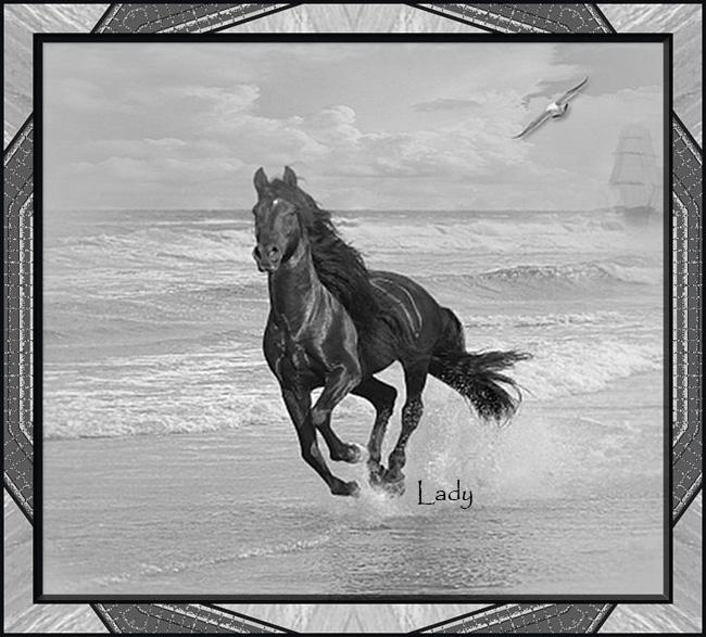 Cheval au galop noir et blanc - Cheval a imprimer noir et blanc ...